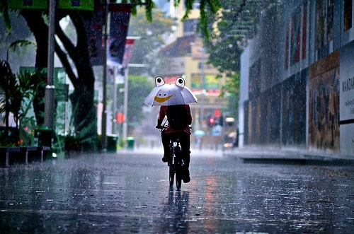 20+ Beautiful Collection Of Rain Photography 12