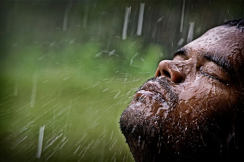 20+ Beautiful Collection Of Rain Photography 13