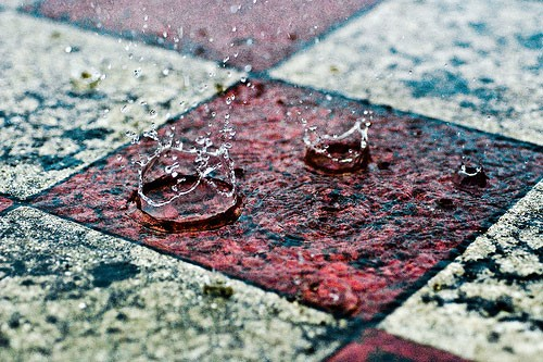 20+ Beautiful Collection Of Rain Photography 18