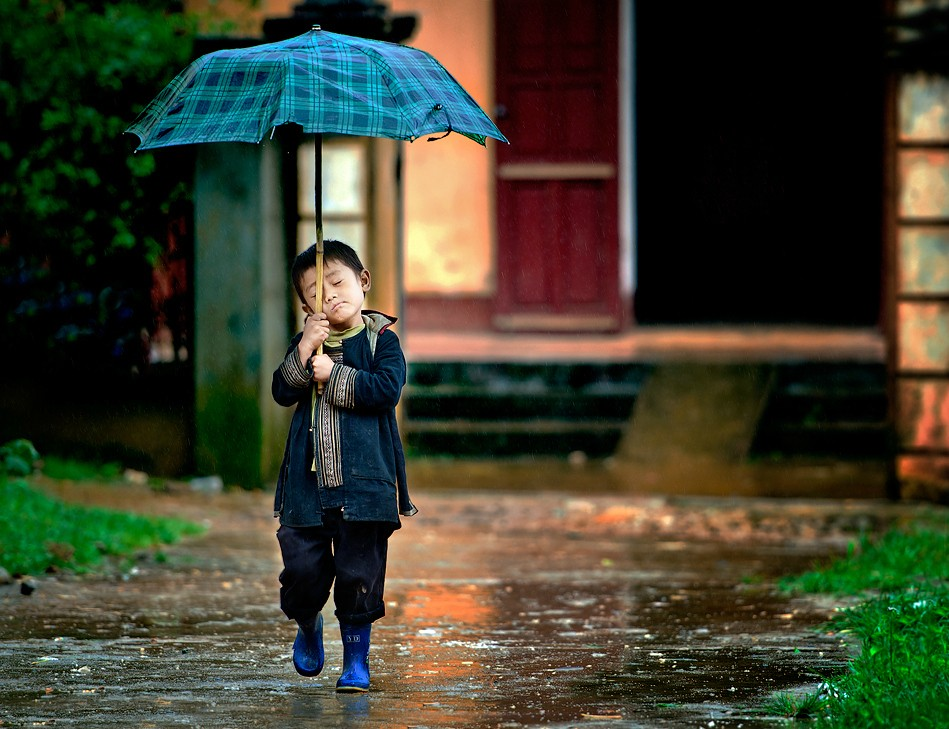 20+ Beautiful Collection Of Rain Photography 19