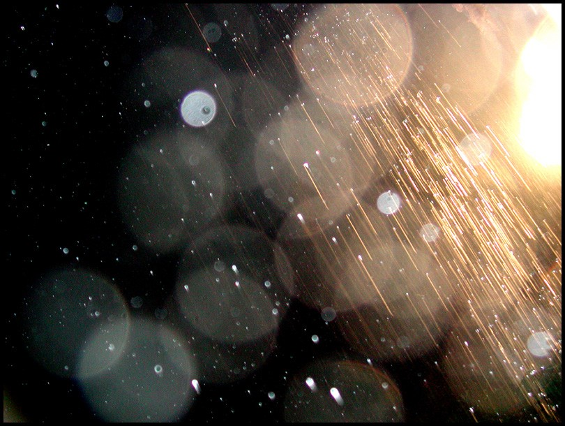 20+ Beautiful Collection Of Rain Photography 20