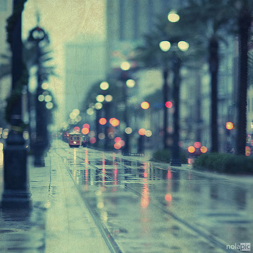 20+ Beautiful Collection Of Rain Photography 4