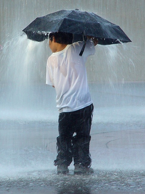 20+ Beautiful Collection Of Rain Photography 7