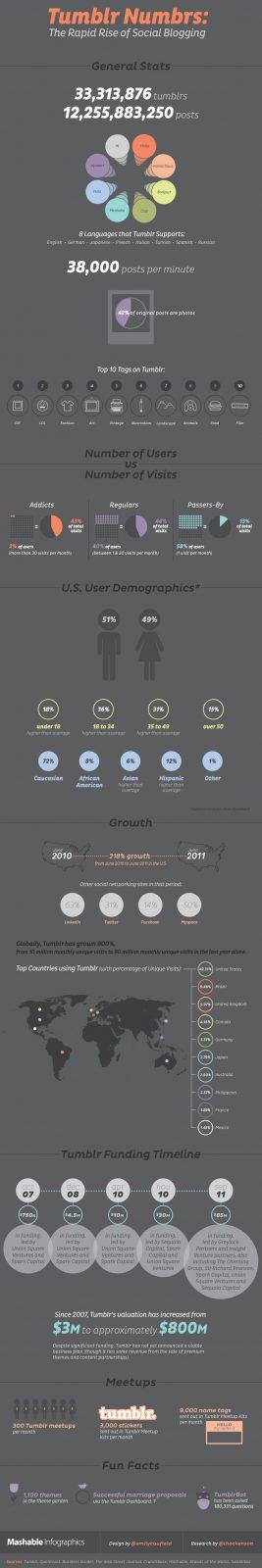 Social Media Networks In 2012 Infographics 4