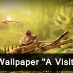 """Free Nature Wallpaper """"A Visitor"""" 38"""