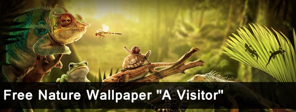 "Free Nature Wallpaper ""A Visitor"" 2"