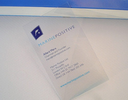 25 Clear & Attractive Transparent Business Cards 12