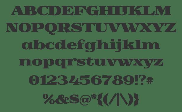 20 Free Unique Fonts For Web Designers 48