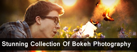 Stunning Collection Of Bokeh Photography  1