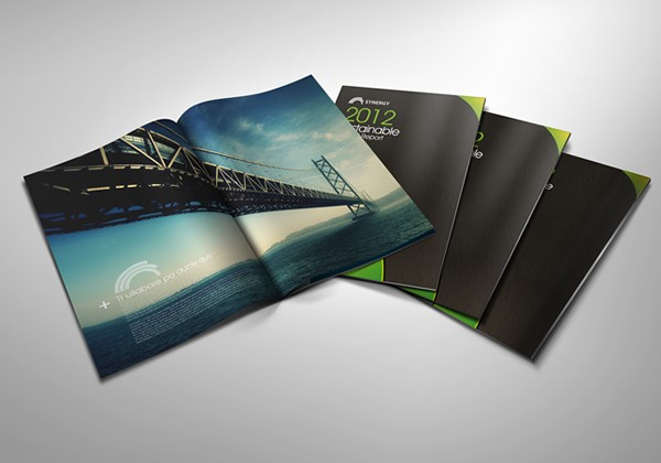 20 + Awesome Brochure Designs For Your Inspiration 9