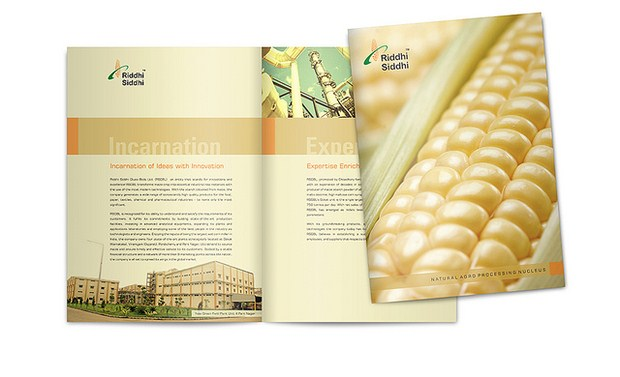 20 Awesome Brochure Designs Inspiration 50