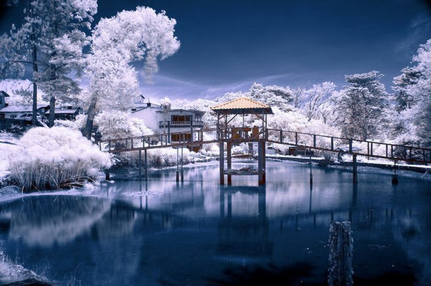 30 Beautiful Examples Of Infrared Photography 23