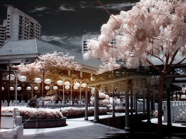 30 Beautiful Examples Of Infrared Photography 28