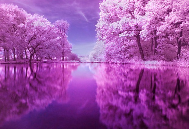 30 Beautiful Examples Of Infrared Photography 30
