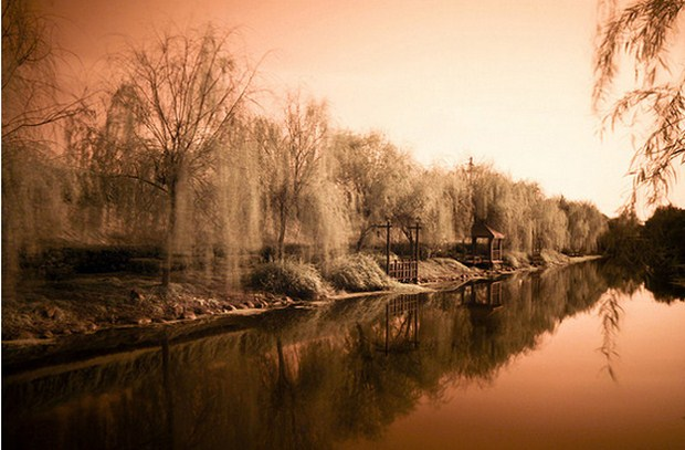 30 Beautiful Examples Of Infrared Photography 4