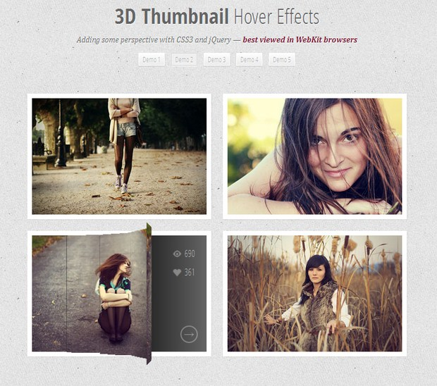 Tutorial To Create Hover Effects With CSS3 And jQuery 5