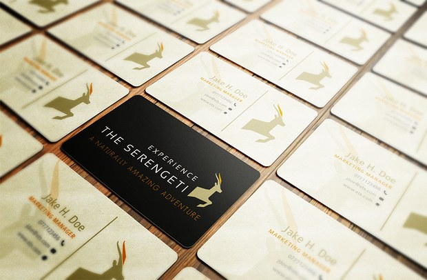 Beautiful Collection of Business Cards Design Inspiration 19