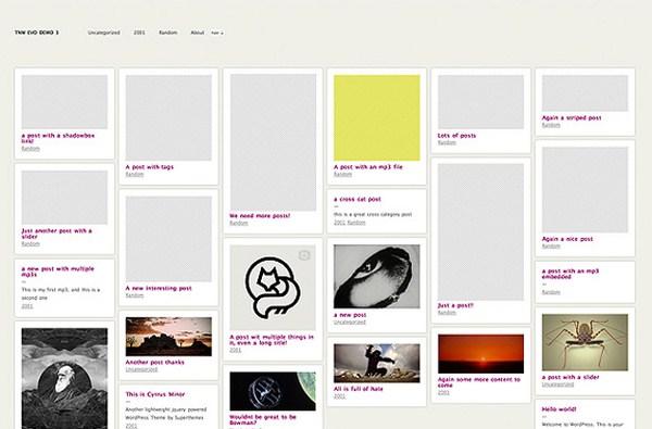 10 Premium Pinterest Inspired WordPress Themes 3