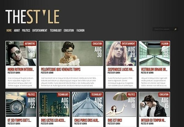 10 Premium Pinterest Inspired WordPress Themes 7