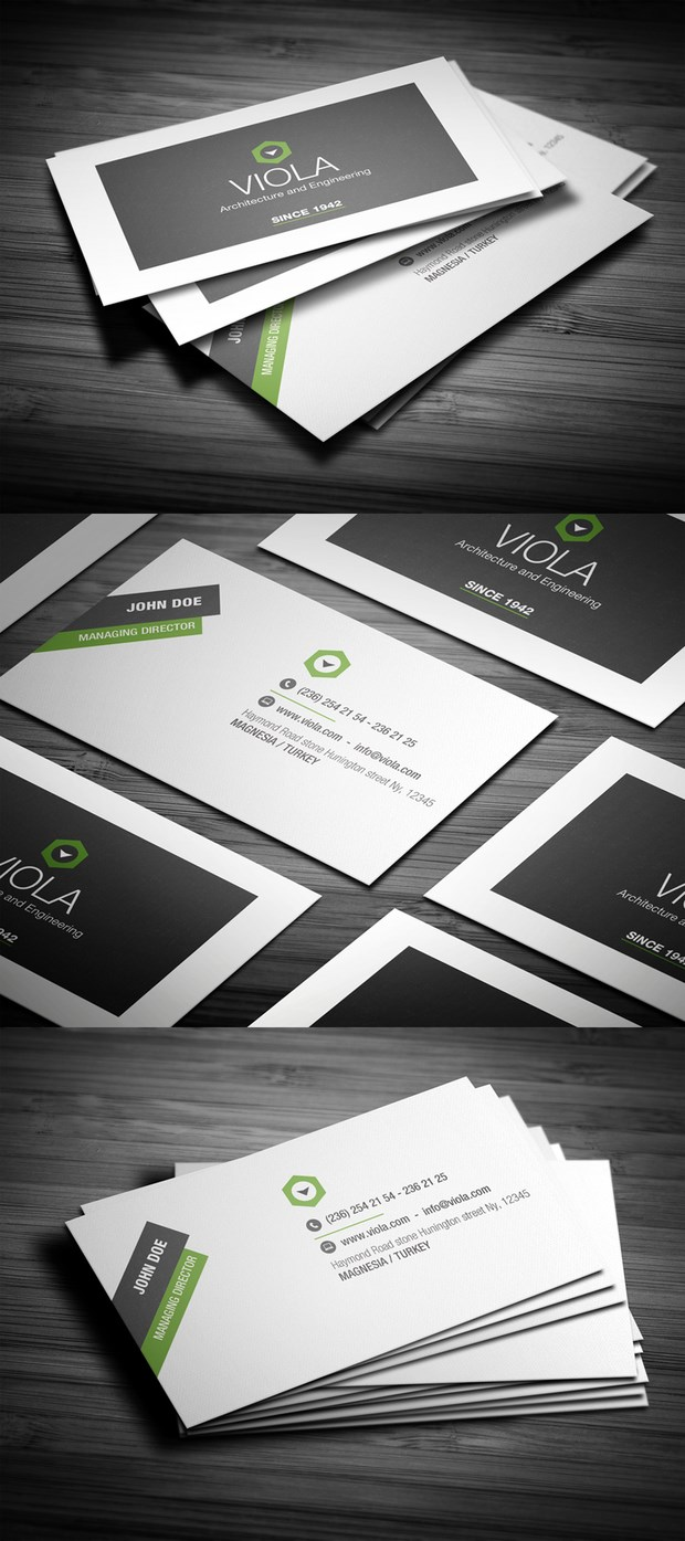 Business Card Design Inspiration  (4)