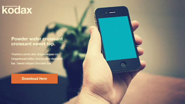 Examples of Minimalist Landing Pages 1