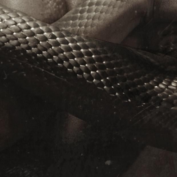 Cleopatra-Dark Artwork-Downgraf (5)