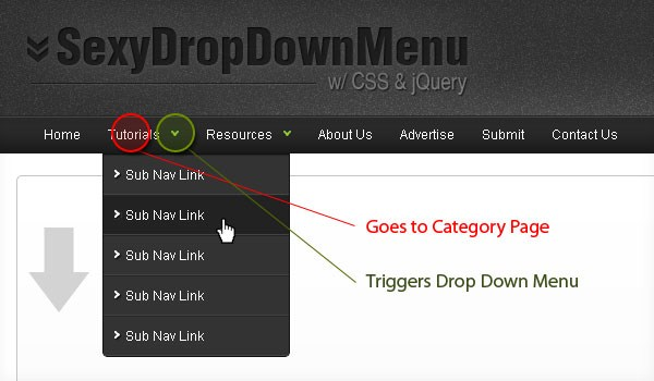Dropdown menu 10