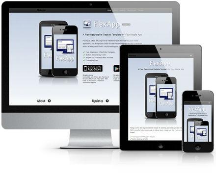 Flex App.jpg