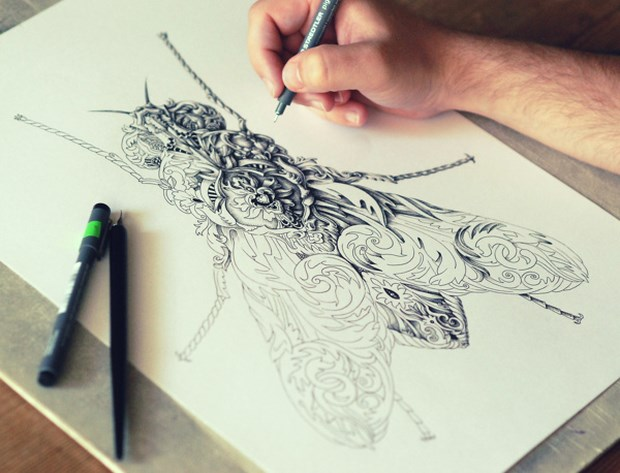Pen Drawings