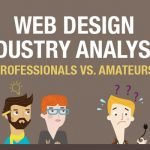 Web Design Industry Analysis Professionals vs Amateurs Infographics