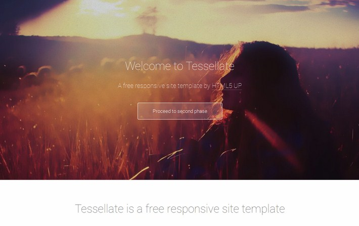 Tessellate Free Responsive Web Template