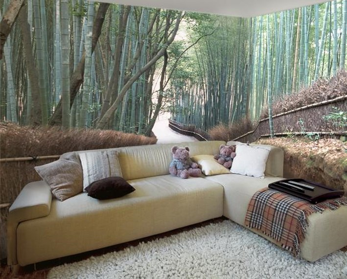 Wall Murals Ideas