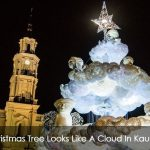 Christmas Tree Looks Like A Cloud In Kaunas