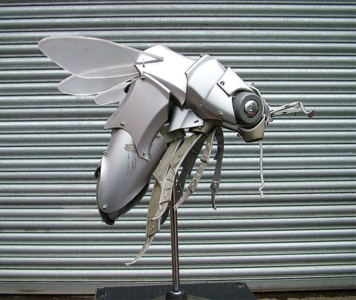 Wonderful Hubcaps Creature