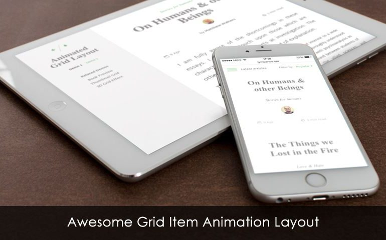 Awesome Grid Item Animation Layout