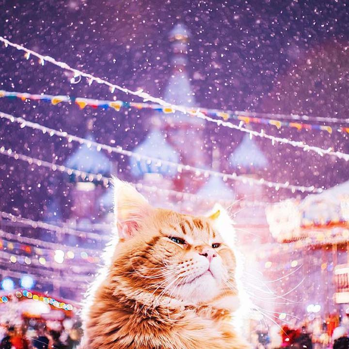 Moscow-City-During-Christmas-Festival-011