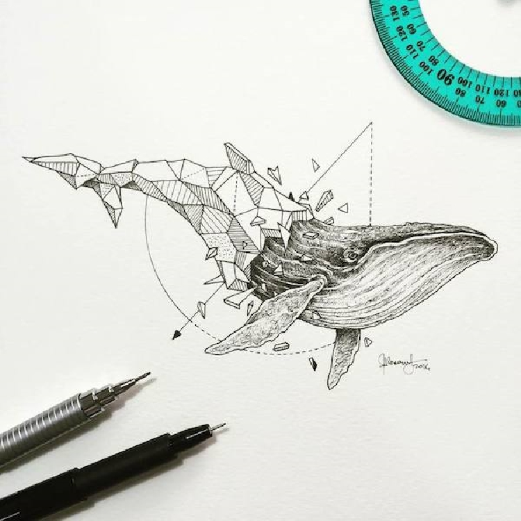 Intricate and Geometrical Drawings of Wild Animals
