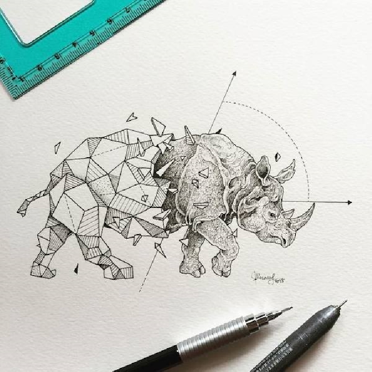 Intricate-and-Geometrical-Drawings-of-Wild-Animals