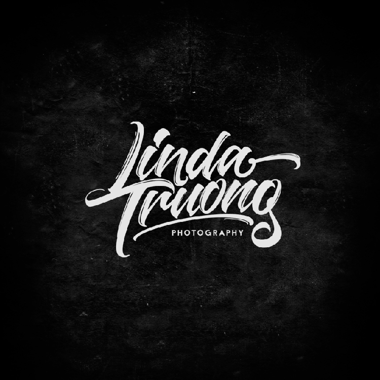 Lettering and Calligraphy Logos 2016