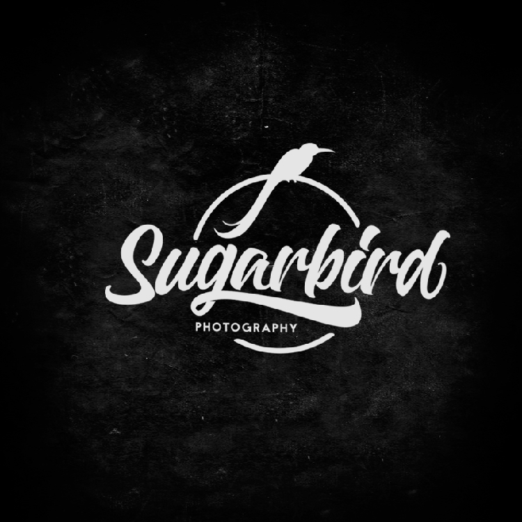 Lettering and calligraphy logos david milan