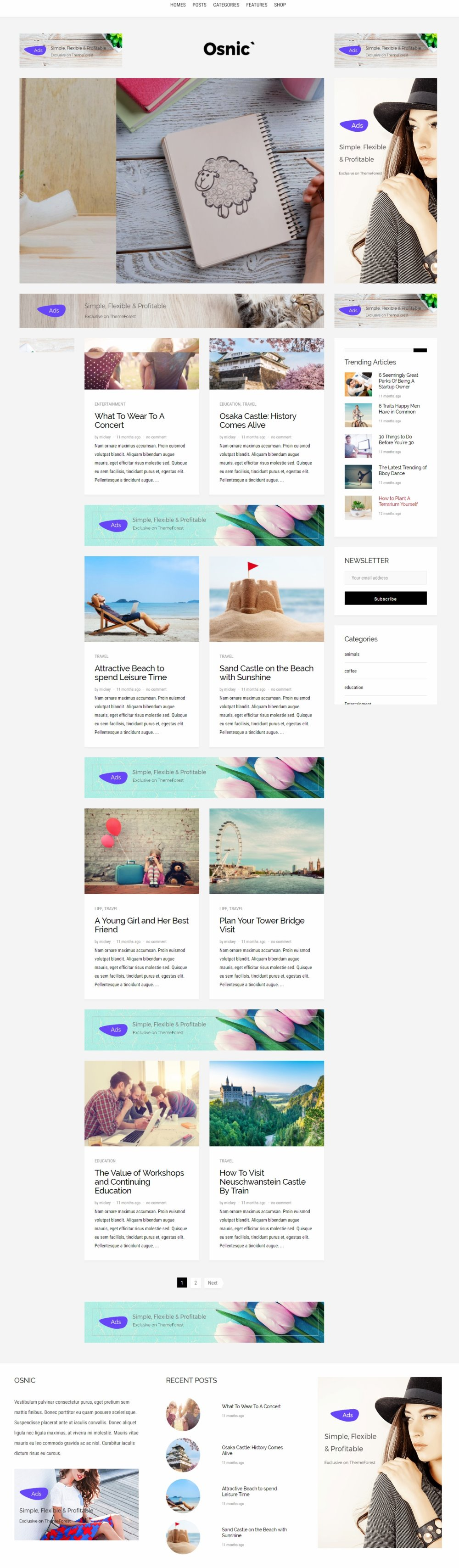 Osnic - AD Optimized BlogMagazine Theme for Adsense & Affiliate