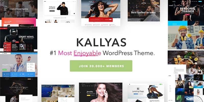 8 Terrific WordPress Themes That Will Not Dissapoint You 37