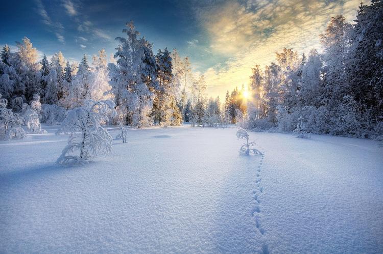 Photographer Captures Spectacular Photography