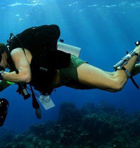 5 Beginner Tips for Underwater Photography