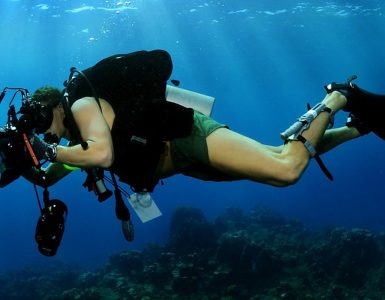 5 Beginner Tips for Underwater Photography