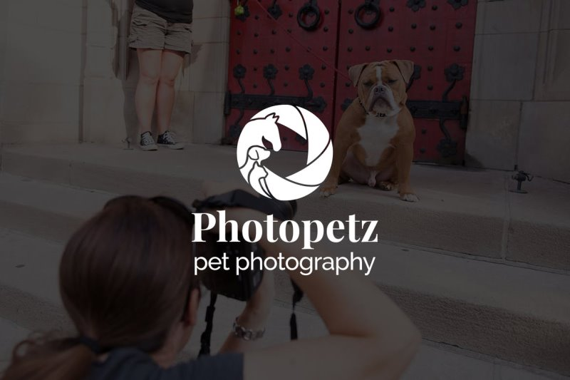 Best-Logos-for-Photography-009