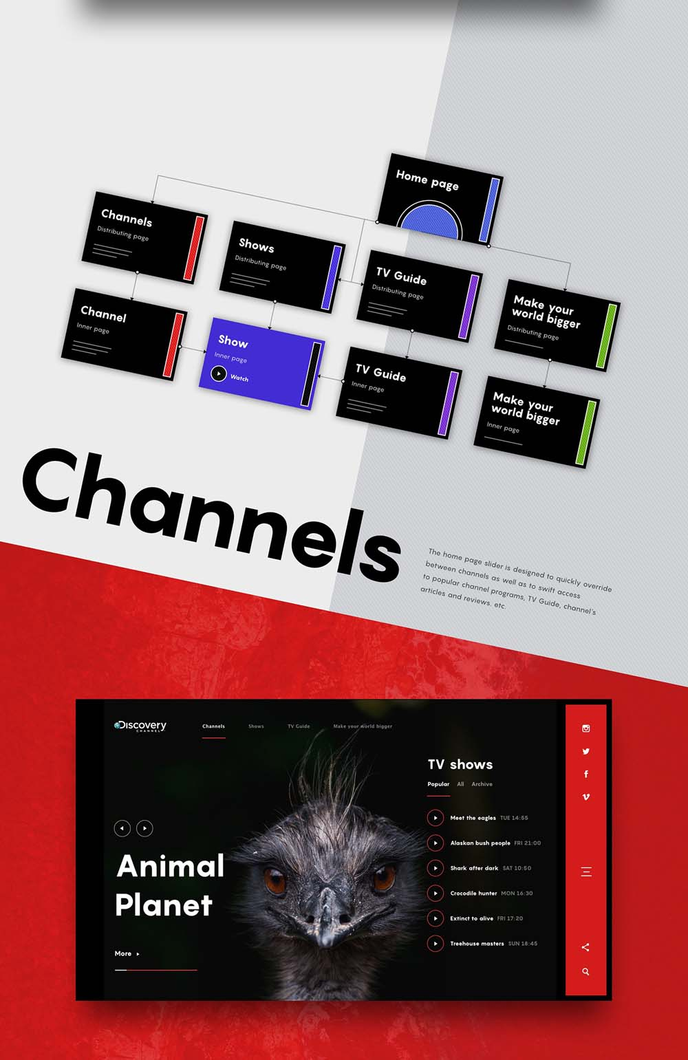 Animated-Web-Design-Concept-of-Discovery-Channel-001