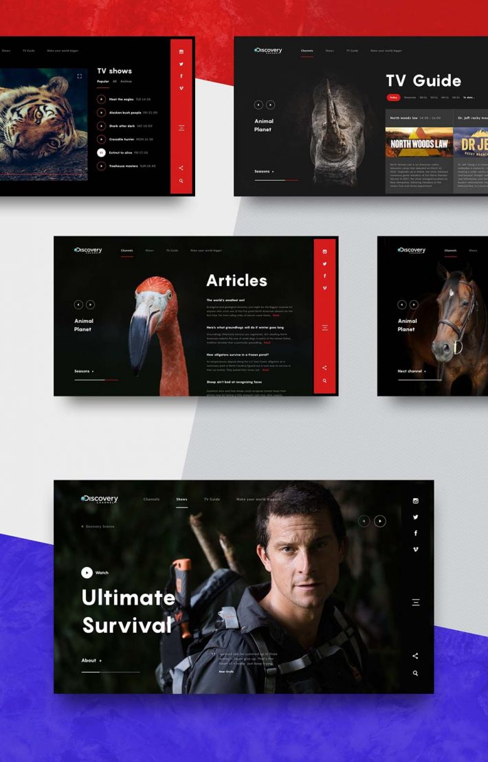 Animated-Web-Design-Concept-of-Discovery-Channel-002
